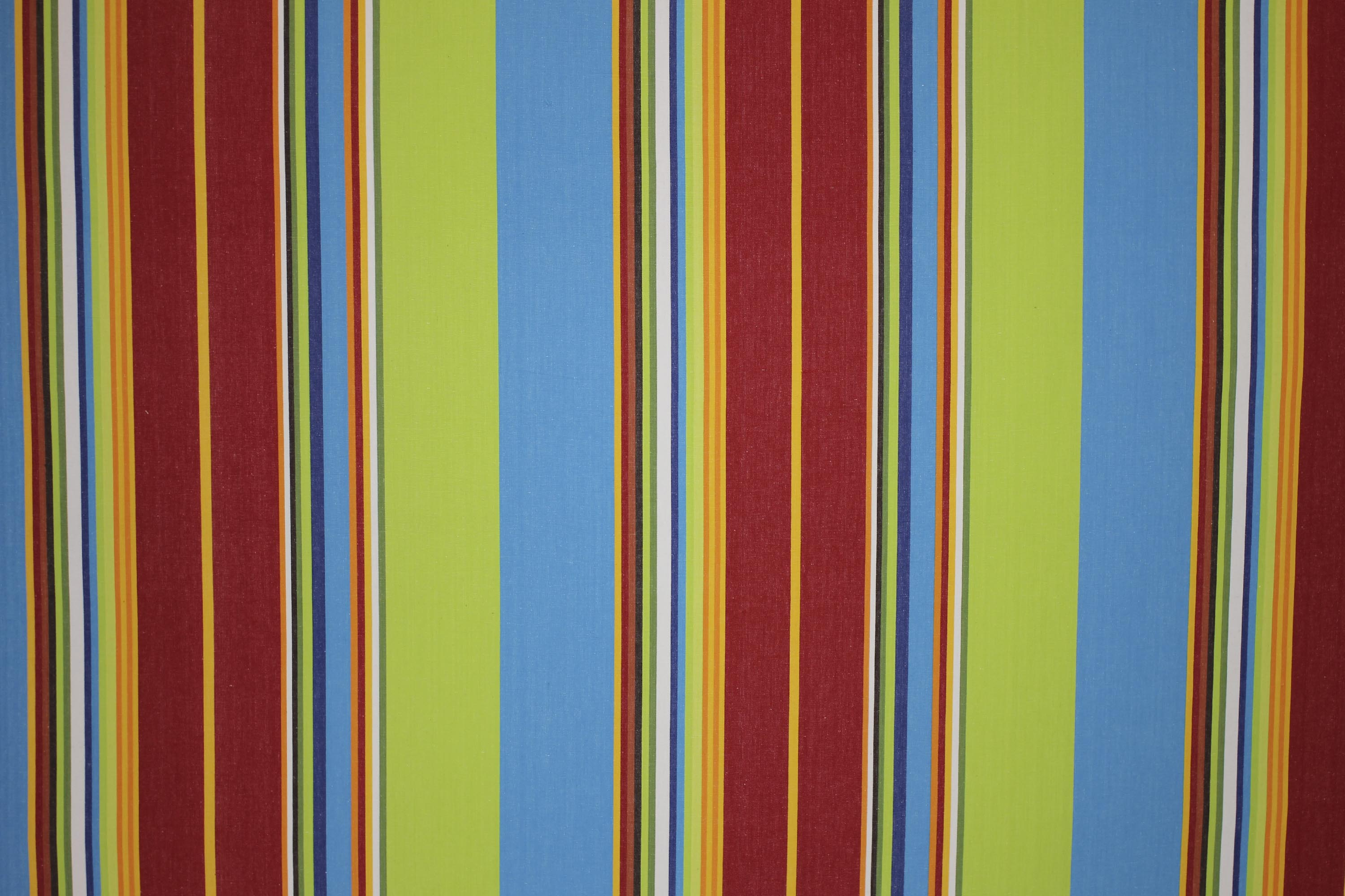 Grand Prix Lime Striped Fabric